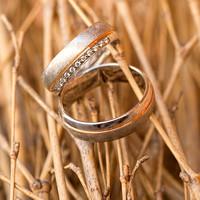 Hochzeitsringe, kreatives Foto der Ringe