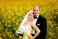 Brautpaar im blühenden Rapsfeld, Köniz