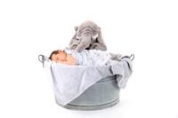 fotoelvey - Schwangerschaft und Babyfotos