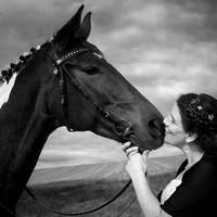 fotoelvey - Tierportraits